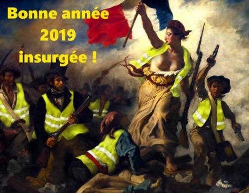 Voeux-2019 révolution.jpg