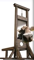 Tete_de_veau-guillotine.jpg